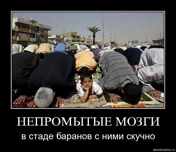 Исламские картинки с приколом, стран