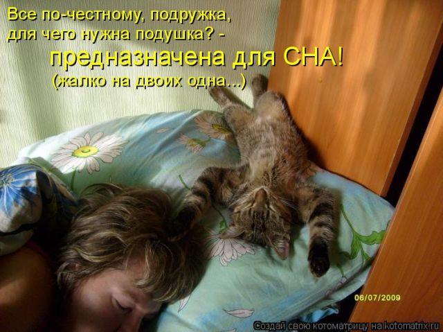 Не спишь подруга прикольные картинки
