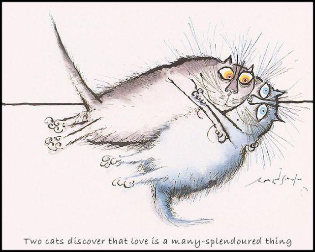 Прикольные картинки коты и кошки рисунки, сердце юбилеем картинка