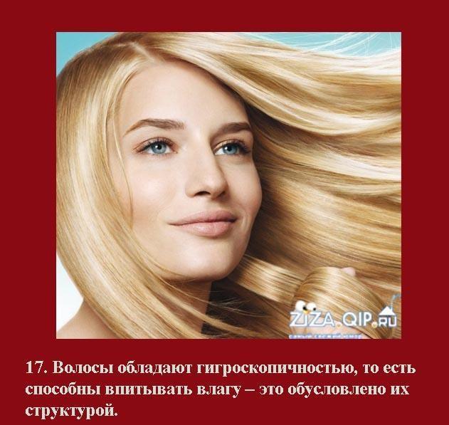 Приколы о волосах картинки