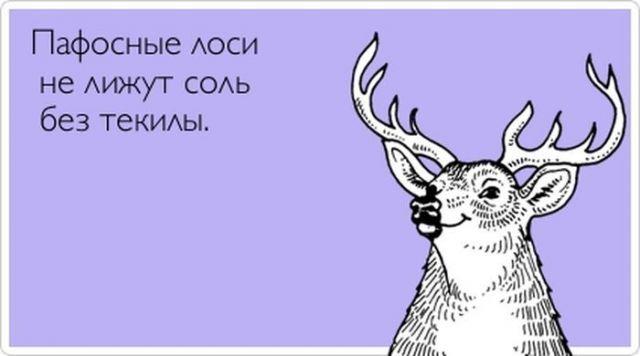 Картинка: Прикольные открытки: live4fun.ru/joke/643561