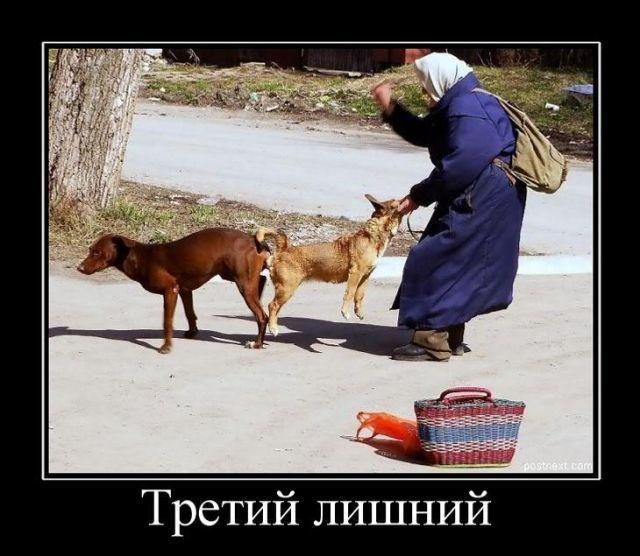 Бабка трахается с сабакай фото 291-832