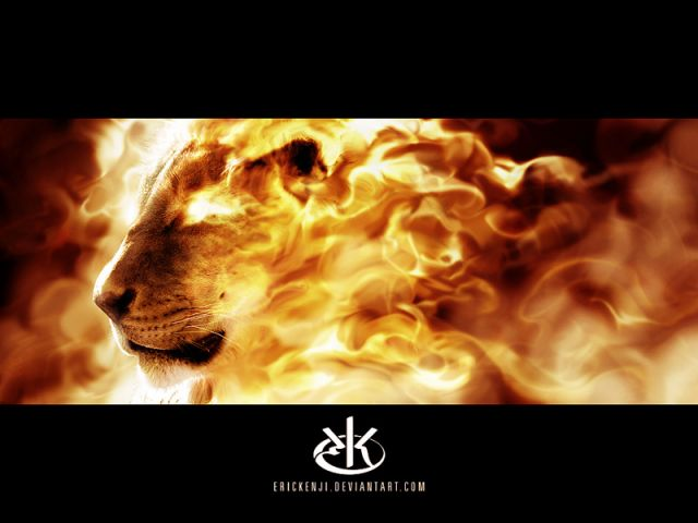 Картинка огонь и лед игры - 6d