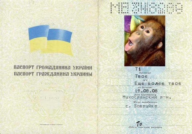 Просто данные паспорта как
