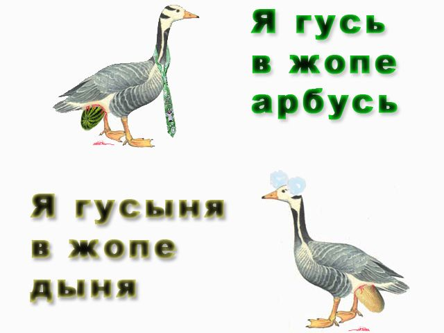 ebut-v-ochko-domashnie