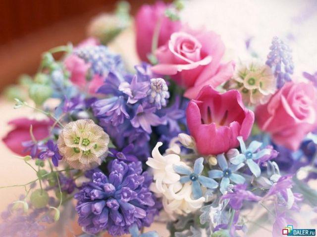 Всё цветы мира