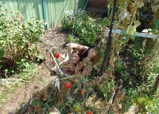 Голые в огороде фото 66458 фотография