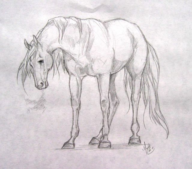 Рисунок карандашом секса мамы фото 641-179