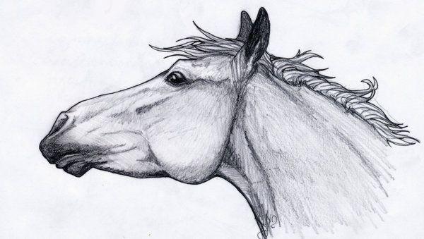 красивые картинки рисунки карандашом