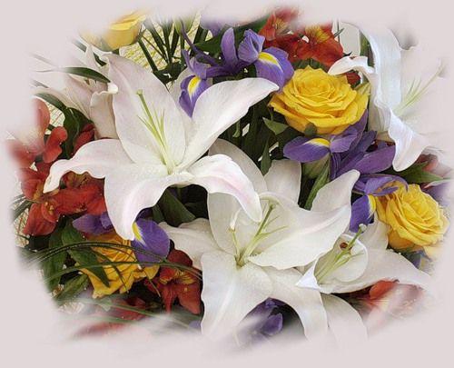 Открытки цветы для любимой лилии 98
