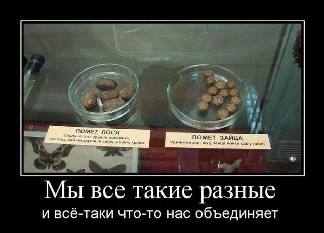 Картинка: я ты не усложняй!!!: http://live4fun.ru/joke/492668?gallery=1