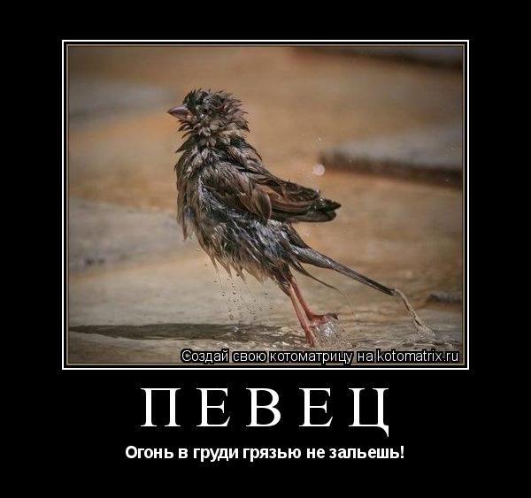 Анекдот Про Воробья