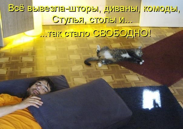 s3img_12398122_36690_7.jpg