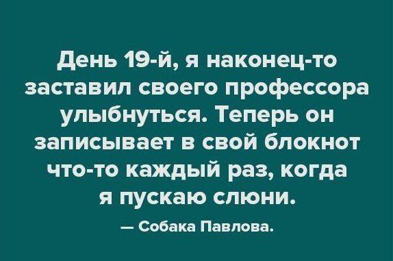 s3img_337088144_5514_1.jpg