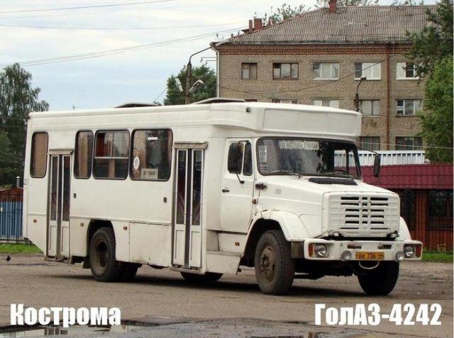 Картинка: А на каком автобусе ездишь ты?: http://live4fun.ru/joke/577490
