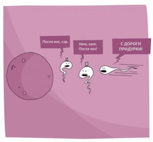 sperma-kak-produkt-pitaniya