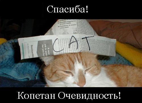 русское домашнее плачет снятое на старый телефон