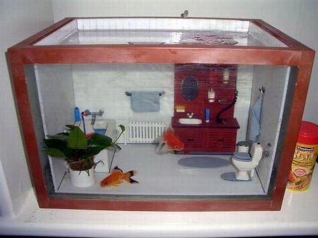 Сделать декорации в аквариум самому